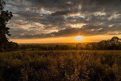 Meadow at Sunset (dmoon1) Tags: sonya6500 hawkinstown meath sunset