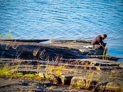 IMG_2581 (fcruse) Tags: cruse sommar naturephotography värmland 2019 travelphotography glava naturfoto vanlife resefoto crusefoto iphonexs sweden sverige glafsfjorden vwt5