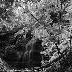 20190624-img297.jpg (ofermod) Tags: ilfordsfx200 hamiltonregion bronicasqa meetup flickr tiffanyfalls