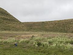Hikers, Abbotts Lagoon, Pt Reyes 41402n (Al Greening) Tags: abbottslagoon ptreyes california hiker