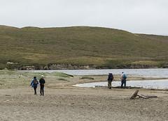 Hikers, Abbotts Lagoon, Pt Reyes 41410n (Al Greening) Tags: abbottslagoon ptreyes california hiker
