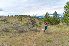 FOU02180.jpg (Murray Foubister) Tags: people canada summer bc kamloops 2019 competition orienteering