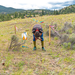 FOU02165.jpg (Murray Foubister) Tags: people canada summer bc kamloops 2019 competition orienteering