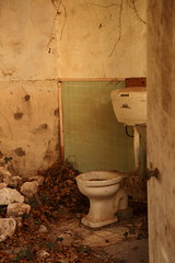 Only if you're Desperate (Darren Schiller) Tags: australia abandoned padthaway southaustralia derelict disused decaying deserted dilapidated decay empty toilet bathroom history lavatory cistern mess old patina rural rustic rusty ruin smalltown plumbing