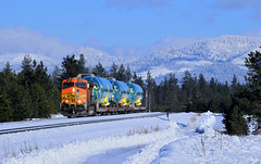 Chilled Fuselages (SeanFKelly) Tags: winter snow bnsf boeing 737 fuselage forest trees sky train railroad chilly cold athol coeurdalene idaho panhandle northidaho
