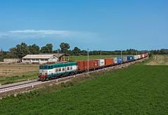 FS E656 450 (maurizio messa) Tags: caimano cargo e656 intermodale nikond7100 mau bahn ferrovia freighttrain fret guterzuge emiliaromagna treni trains railway railroad