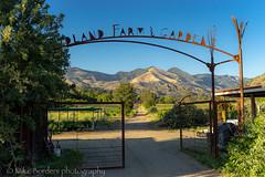 Midland Garden and Grass Mountain (borders92109) Tags: midland school santa ynez los olivos california central garden farm boarding nature sony a7ii tamron 2875