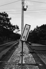 001135250038 (w21266rice) Tags: nikon fm10 film 底片 菲林 analog micronikkor 55mm f28 ilford xp2 super 400 c41黑白 blackandwhite blackwhite