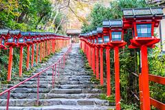 Praying For Rain (johnshlau) Tags: prayingforrain kifunejinjashrine 貴船神社 shrine god water rain kyoto japan temple architecture red lanterns staircase path entrance