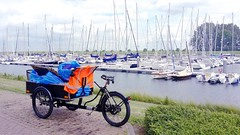 WorkCycles-bakfiets-Gemeente-Kapelle-marina (@WorkCycles) Tags: bakfiets bakfietsen bicycle bike cargobike classic dutch gemeente kapelle marina transportfiets workbike workcycles zeeland