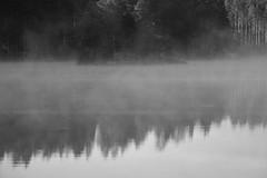 6Q3A3618 (www.ilkkajukarainen.fi) Tags: blackanadwhite mustavalkoinen monochrome luonto nature uusimaa lake järvi blackandwhite suomi finland finlande eu europa scandinavia life happy visit travel travelling sumu usva island saari