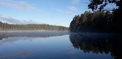 20190623_055735 (www.ilkkajukarainen.fi) Tags: lake järvi uusimaa visit travel travelling happy life nature suomi finland finlande eu europa scandinavia foto luonto valokuva kuva blue green sininen vihreä forest metsä threes puut