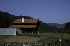 habrá que regar (eitb.eus) Tags: eitbcom 16540 g1 tiemponaturaleza tiempon2019 paisajes bizkaia orozko andoniaza