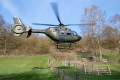 Hubschrauberfluglehrerausbildung in Bückeburg (Offizieller Auftritt der Bundeswehr) Tags: faip ec135 tiefflug hubschrauberfluglehrerausbildung internationaleshubschrauberausbildungszentrum ausbildung hubschrauber schulungshubschrauber bückeburg niedersachsen deutschland flug heer heeresflieger