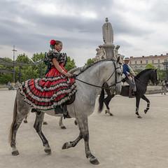 Cavalière Sévillane (Xtian du Gard) Tags: xtiandugard nîmes gard france cavalier cheval horse femme woman esplanade elrocio pentecôte 2019 square carré