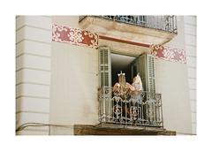 FILM - Unicorns (fishyfish_arcade) Tags: 35mm analogphotography barcelona canonsureshotz135 filmphotography filmisnotdead istillshootfilm kodak portra400 analogcamera compact film streetphotography