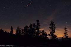 Starlight on the Sods II (KRHphotos) Tags: stars trees westvirginia nightphotography landscape dollysods monongahelanationalforest nature