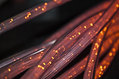Optical fiber (adcape_) Tags: edinburgh edimburgo escocia scotland uk museum camera obscure camara oscura museo art arte light luz luces fun picoftheday diversion cable fiber optical optic science ciencia