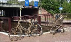 Emerged (#explored) (XBXG) Tags: fiets bike vélo bicyclette winkelwagen shoppingcart kenaupark kinderhuissingel haarlem kanaal gracht nederland holland netherlands paysbas explored