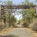 Abandoned Union Carbide Factory, Bhopal, 2019. Chris Burton.