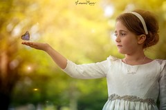I like fairy tales, and I like dreaming. I try to weave the reality into the dream.~Grace Coddington~ (Lorrainemorris) Tags: lorrainemorris dust fairytale fireflies yellow painterly painting zeissbatis85 zeiss sony7rm2 sony dreams colours magical child sunlight butterfly
