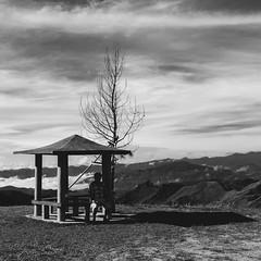 Meditation. (Andy @ Pang Ket Vui ( shootx2 )) Tags: meditation landscape black white fujifilm x100f cottage hut hill breezing cool dried tree