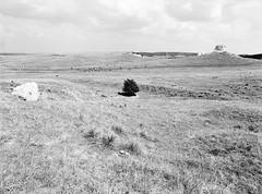 Hat Creek (LarsHolte) Tags: pentax 645 pentax645 645n 6x45 smcpentaxa 35mm f35 120 film 120film analog analogue kosmo foto mono 100iso mediumformat blackandwhite classicblackwhite bw monochrome filmforever filmphotography d76 ishootfilm larsholte homeprocessing usa canam highway plains landscape grassland rock butte