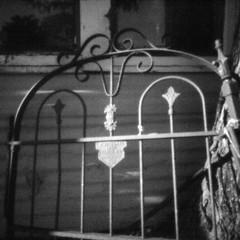 Old gate (rustman) Tags: 11mm blackandwhite bnw bw centraltexas digital gx1 iso12800 m43 monochrome panasonic pinhole pinholeday s11 square texaslife thingyfy thingyfypinholpros11 wppd wppd2019