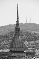 Four Towers of Turin - Monochrome (John of Witney) Tags: towers moleantonelliana monochrome blackandwhite belltower campanile cathedral cathedralofsaintjohnthebaptist cattedraledisangiovannibattista turin torino italy italia lacittàmetropolitanaditorinovistadavoi