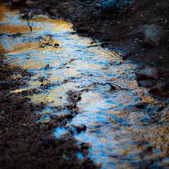 In Canyons 356 (noahbw) Tags: d5000 dof grandstaircaseescalantenationalmonument nikon utah williscreek abstract autumn blur canyon creek depthoffield desert landscape light natural noahbw reflection rock slotcanyon square stone water
