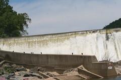 Watching the Water (eyriel) Tags: humor nature wildlife water river dam bird birds turkeyvulture rocks
