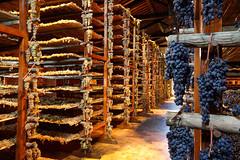 22_wine-avignonesi-montepulciano-tuscany (travel_expert) Tags: vineyard italy