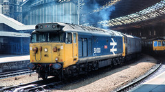 Glorious afternoon (Filton Fifty) Tags: 50033 class50 50 br britishrail largelogo glorious templemeads bristol 1988
