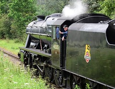 Great Central Railway Thurcaston Leicestershire 26th June 2019 (loose_grip_99) Tags: greatcentral railway railroad rail train rothley locomotive leicestershire eastmidlands england uk steam engine gassteam uksteam lms stanier 8f 280 48305 railways trains preservation transport june 2019