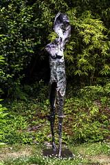 Winged Woman Walking Sculpture Garden De Young Museum Golden Gate Park San Francisco California (Barbara Brundage) Tags: winged woman walking sculpture garden de young museum golden gate park san francisco california