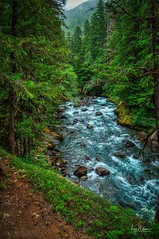 Ohanaceposh (Jerry Nelson Photography) Tags: river water trees forest rocks rapids hdr landscape scenic