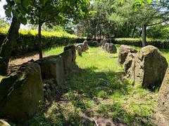 Lengerich - Megalith Grab (Alf Igel) Tags: lengerich megalith grab megalithgrab grosssteingrab grossteingrab germanen nrw germany deutschland