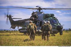 H-36 CARACAL (Força Aérea Brasileira - Página Oficial) Tags: 2018 brazilianairforce csar campogrande caracal fab h36caracal ms matogrossodosul voo aoarlivre areaverde asasrotativas ceu ceuazul exercicio exerciciotapio ferido forcaaereabrasileira fotobrunobatista helicoptero militares operacaotapio operacional resgate resgateemcombate tapio treinamento