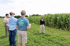IMG_7605 (UGA CAES/Extension) Tags: cornboil jphilcampbellsrresearchandeducationcenter cropandsoilsciences oconeecounty researchers cropandsoil livingmulch