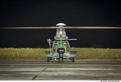 VH-36 CARACAL (Força Aérea Brasileira - Página Oficial) Tags: 1gav8 aeronave cpbv cpbvcampodeprovasbrigadeirovelloso cachimbo campodeprovasbrigadeirovelloso caracal esquadraofalcao eurocopterec725 fab forcaaereabrasileira forçaaéreabrasileira fotojohnsonbarros h36caracal helicoptero nightshot noturno brazilianairforce novoprogresso pa brazil