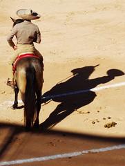 the shadow (aficion2012) Tags: corrida istres francia france provence charra bullfight bulls toros tauromachie tauromaquia taureaux 2019 horses cheval mexicain style mexique mexico cavalier shadows ombres sombrero hats chevaux composition rider horseman ocra tones costumes