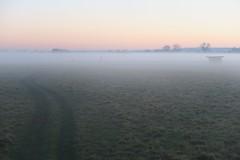 Oxford, England (nature chief) Tags: oxford uk port meadow mist fog dusk オックスフォード イギリス