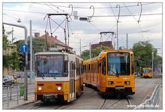 Tram Budapest - 2019-39 (olherfoto) Tags: tram tramcar tramway villamos strasenbahn budapest bkv ungarn hungary tatra tatratram