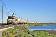 Trains de fruits et légumes en Languedoc (Alexoum) Tags: sncf bb22200 train fruit légumes primeurs languedoc roussillon sud port nouvelle