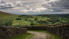 a green and pleasant land (Phil-Gregory) Tags: ambleside2019 trees troutbeck ambleside landscapes scenicsnotjustlandscapes lane wednesdaywalls wall stonewall green nikon iamnikon lakedistrict naturalphotography cloudscape clouds sky sigma18250macro sigma