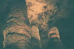 000116080018 (JRPAULES) Tags: filmphotography film fujifilm fuji fujicolor fujicolor400 fujisuperiaxtra fujisuperia canon canonf1 canonfd