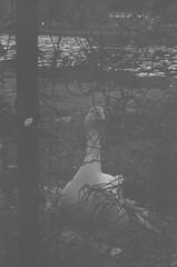 000033740015 (old_dancer) Tags: blackandwhite 35mmfilm zenit
