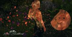 LOOK # 078 ⎝ツ⎠ Alberta (ஜ AnnaB ஜ Blackstrand Moda SL) Tags: sonaedge dress amour classic maitreya body belleza bento sl secondlife sexy slink realevil joias jewelry poz original pose posing photography mesh 3d cute word virtual peaple spring flowers