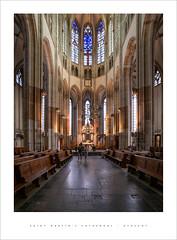 Saint Martin's Cathedral - Utrecht (Parallax Corporation) Tags: saintmartinscathedral utrecht interior vaultedceiling classicalcolumns wideangle sonya7rii zeissbatisfe18mmf28 stainedglass