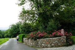 El paseo de la mañana (eitb.eus) Tags: eitbcom 16599 g1 tiemponaturaleza tiempon2019 gipuzkoa hondarribia josemariavega